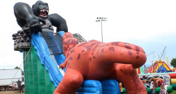 Tobogan inflable T-Rex vs King Kong 5